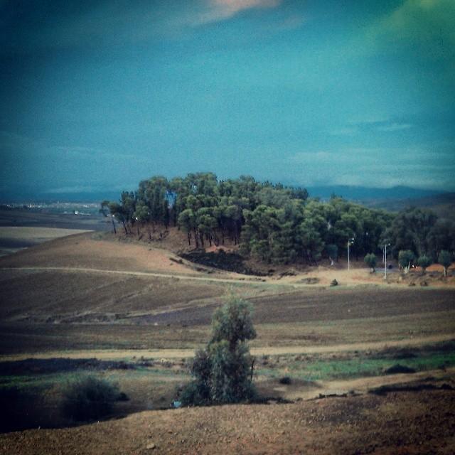 Arbaoua's hill